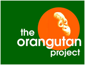 the-oragutan-project-logo