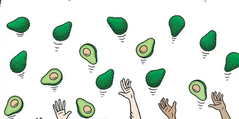 How the Avocado Became the Fruit of Global Trade