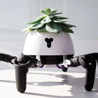 This Modified HEXA Robot Takes Care of The Plant On Its Back
