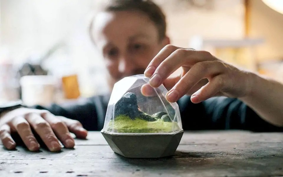A vacuum-formed terrarium made with the FormBox