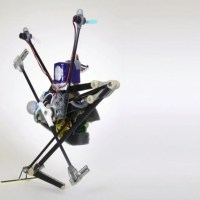 The Salto-1p Tiny Robot Demonstrates Its Impressive Jumping Capabilities