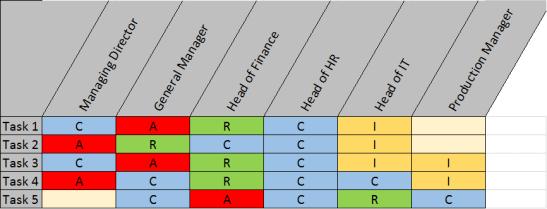 RACI Matrix1