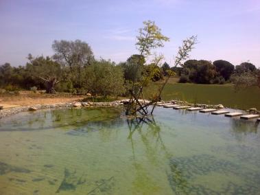 lago natural (12)