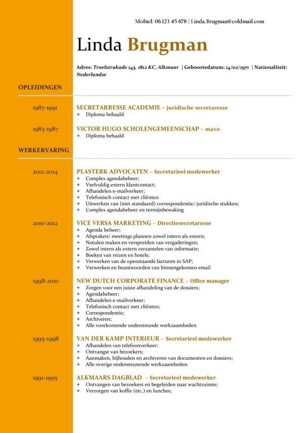 CV Voorbeeld Newport (Gold Standard) 1/2, gratis voorbeeld cv, top cv voor kantoorfuncties