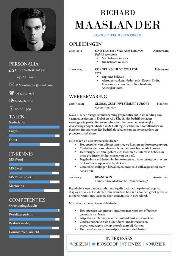 CV Sjabloon York 1-1, voorbeeld cv commercieel medewerker