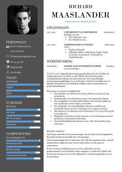 CV Sjabloon York 1-2 (2 paginas)