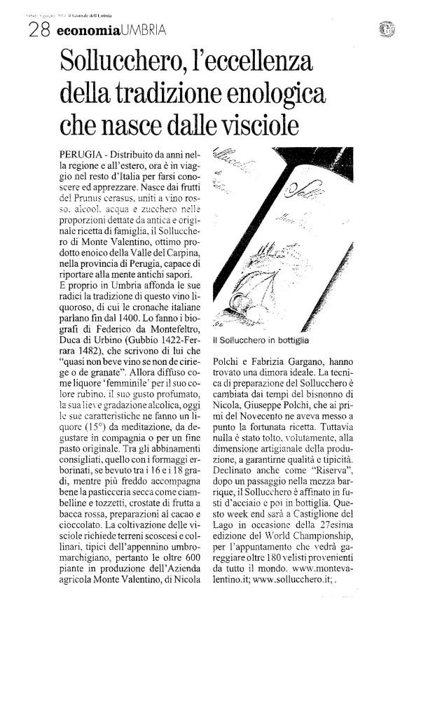 GIORNALE DELL UMBRIA 8 6 2013 PAG. 28 BN