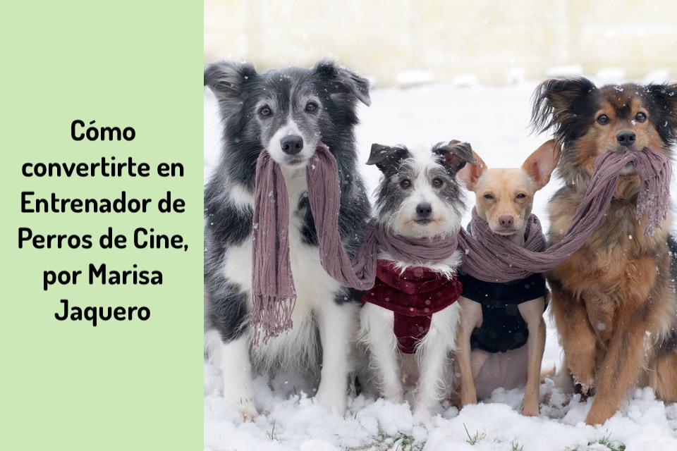 Cómo convertirte en Entrenador de Perros de Cine, por Marisa Jaquero