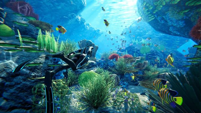 Reseña de Beyond Blue para PS4, Xbox One, PC