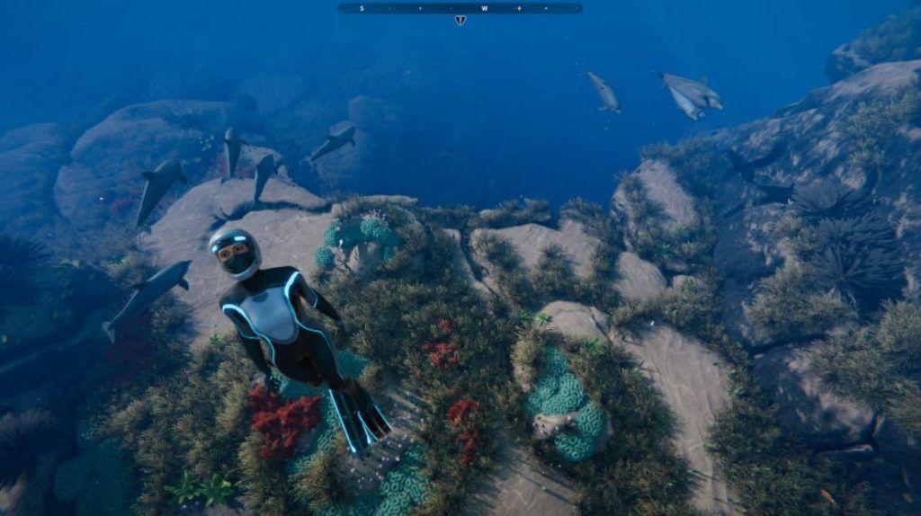Beyond-Blue-screenshots-inmersión