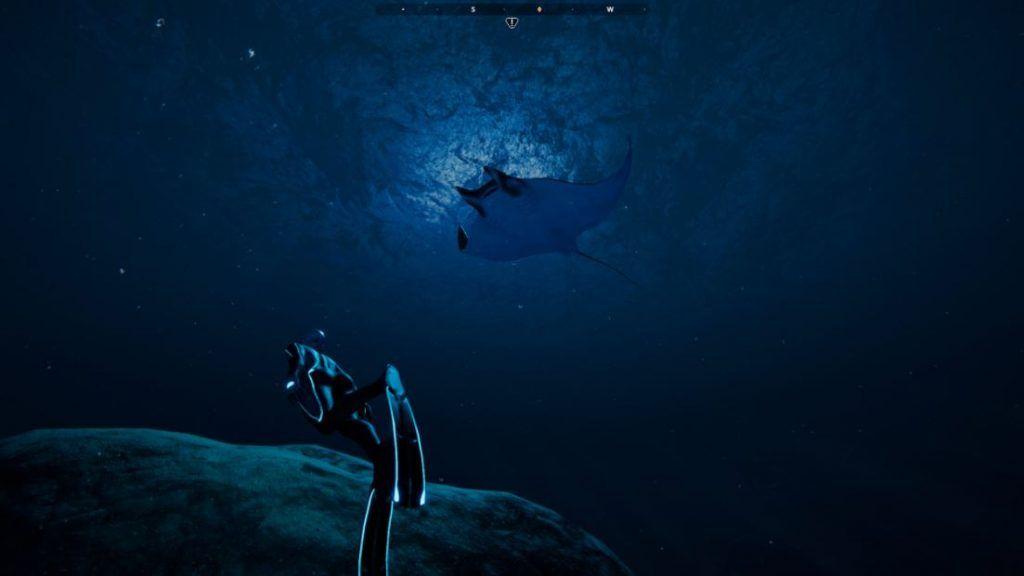 Beyond-Blue-screenshots-rayas