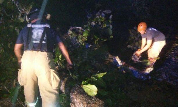 Embarazada queda atrapada luego que un árbol cayera sobre su casa en Apopa