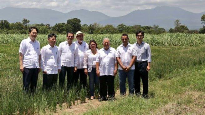 GOES inaugura sistema de riego que ayudará a producir más de 43 mil quintales de arroz