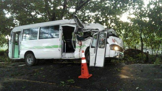 Árbol cae sobre un microbus y mata a su cobrador en La Paz