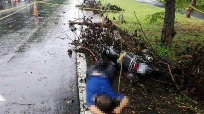 Motociclista muere tras accidentarse en la Autopista Comalapa