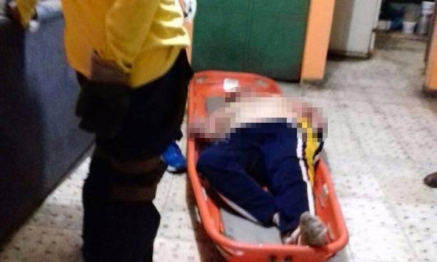 Mujer muere tras ser atacada por un enjambre de abejas en San Salvador