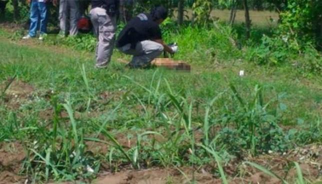 Hallan el cadáver de un hombre que era devorado por 'zopes' en Chalatenango
