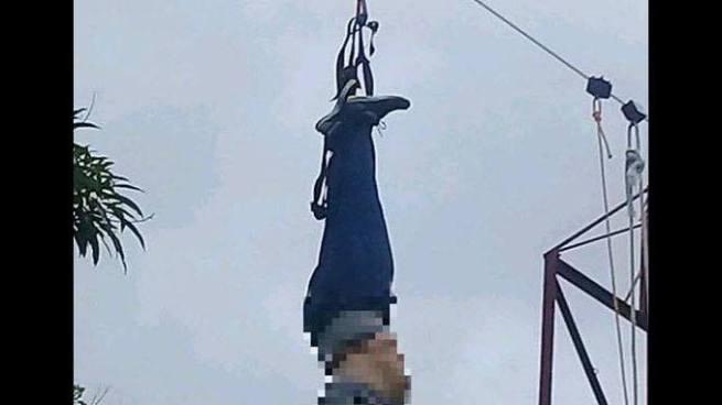 Mujer muere practicando canopy en un turicentro de San Miguel