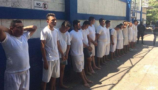 Operativo en áreas rurales de Sonsonate deja la captura de 13 presuntos pandilleros