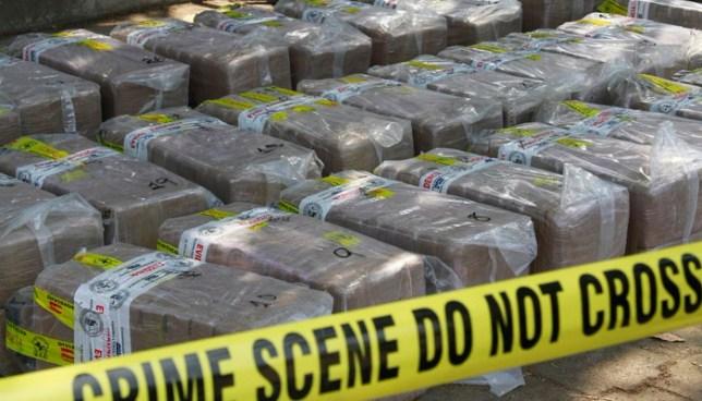 División Antinarcóticos incauta más de 900 kilos de droga en enero