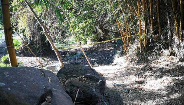 Matan a machetazos a hombre de nacionalidad hondureña en Corinto, Morazán