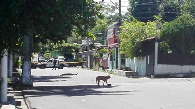 Hombre es asesinado a balazos en colonia San Antonio, Cuscatancingo