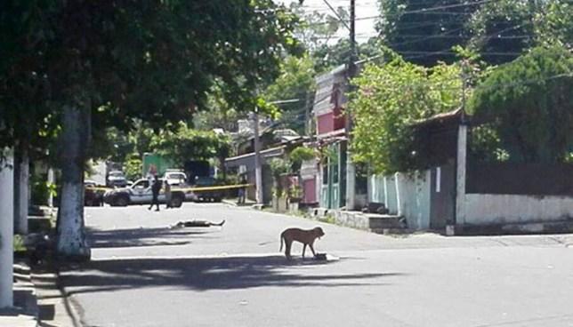 Asesinan a balazos a un joven en una peligrosa colonia de Cuscatancingo