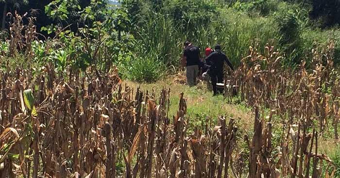 Matan a una mujer al interior de una milpa en Teotepeque, La Libertad