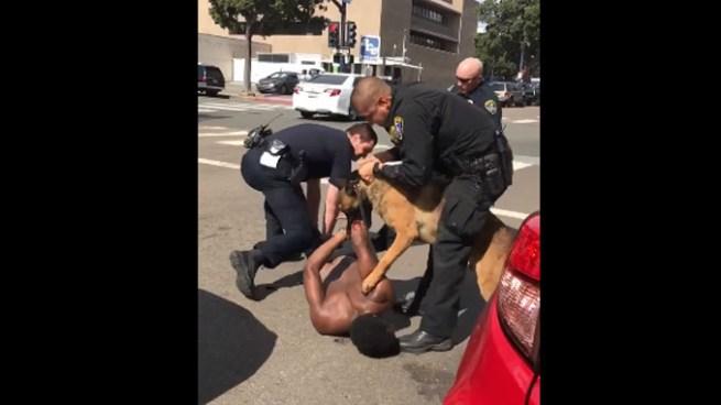 Hombre amenazaba a un agente cuando era arrestado y el perro policía se descontrola