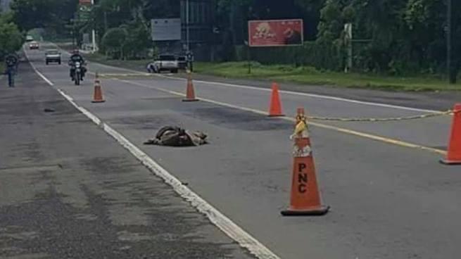 Hombre muere tras ser atropellado por un vehículo en Usulután