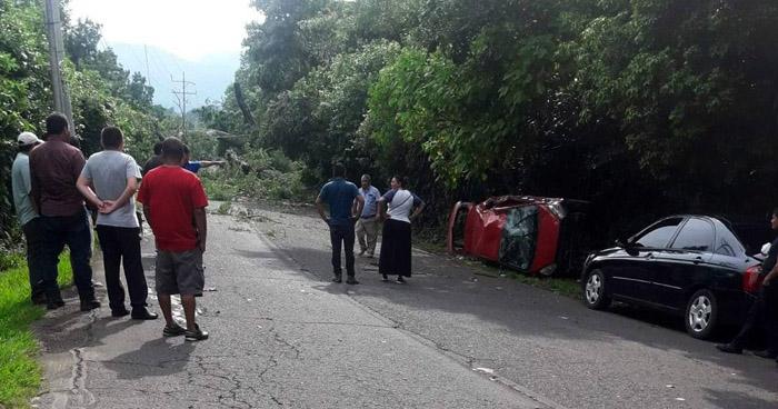 Árbol cae sobre un vehículo en carretera de Usulután y deja dos lesionados