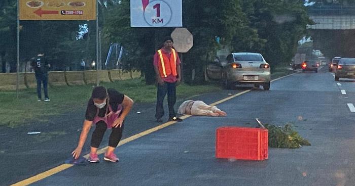 Hombre muere al ser atropellado a pocos metros de una pasarela