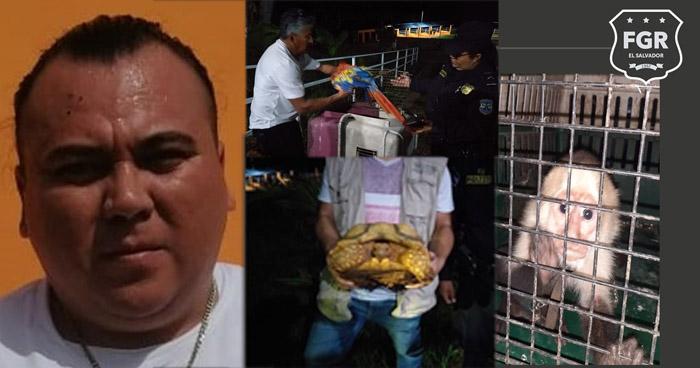 Prisión preventiva contra cabecilla de pandilla y otros 13 imputados que operaban en Morazán