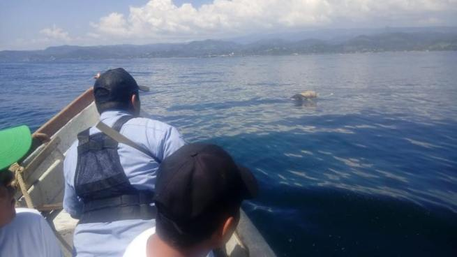 Recuperan el cadáver del joven que fue arrastrado por una ola en playa Conchalío