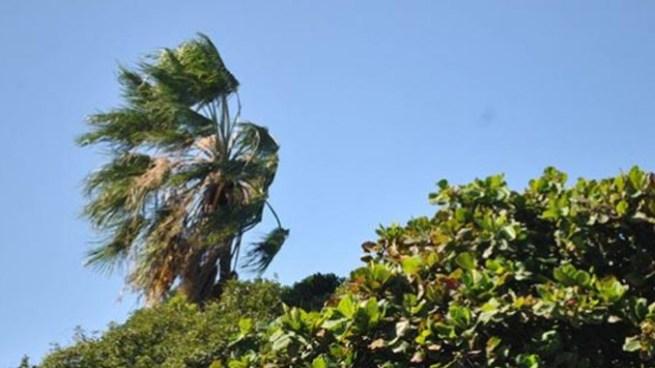 Se esperan vientos ligeramente acelerados y ambiente cálido durante el día