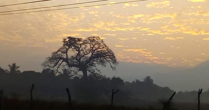 Nubosidad en tránsito y ambiente muy caluroso en horas de la tarde