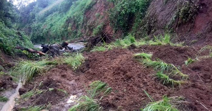 Una lesionada, diez árboles caídos y cuatro derrumbes entre afectaciones tras lluvias de las últimas horas