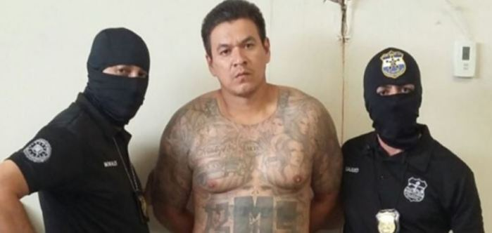 Centro Antipandillas Transnacional detiene a prófugo de la justicia de El Salvador