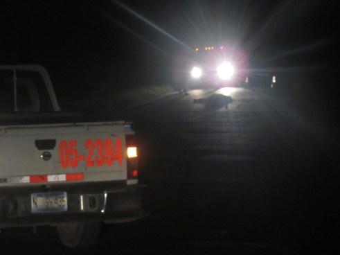 Matan a machetazos a un hombre sobre carretera hacia Puerto Parada, Usulután
