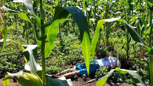 Asesinan a joven miembro de pandillas en Ciudad Barrios, San Miguel