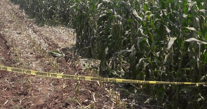 Asesinan y decapitan a un agricultor en terrenos de Ciudad Arce, La Libertad