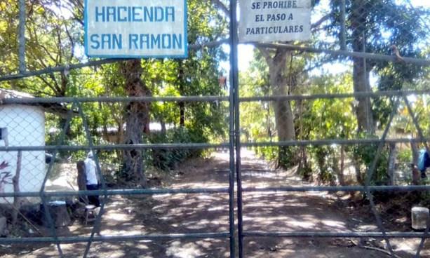 Criminales asesinan a machetazos al encargado de una Hacienda en Izalco, Sonsonate