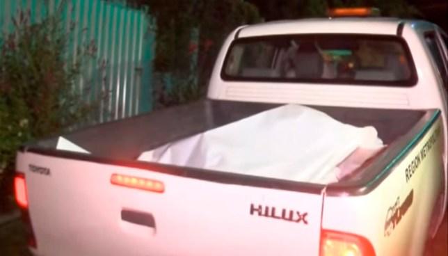 Criminales degüellan a un agricultor, mientras limpiaba un terreno, en  San Martín