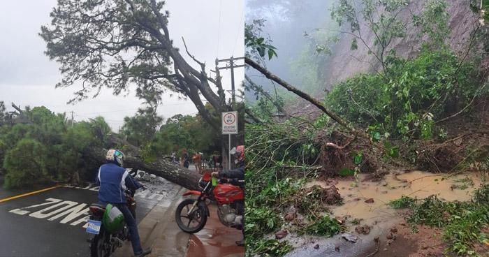 Inundaciones, derrumbes y caídas de árboles ha dejado lluvia este viernes