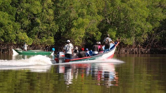 Autoridades encuentran a pescador ahogado en manglar de La Unión