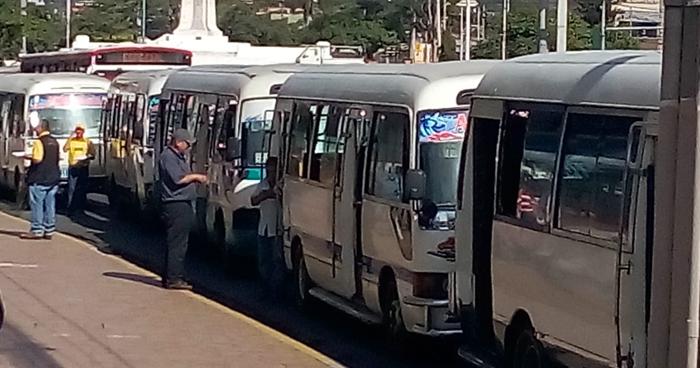 Más de 20 motoristas de transporte público no portaban licencia de conducir