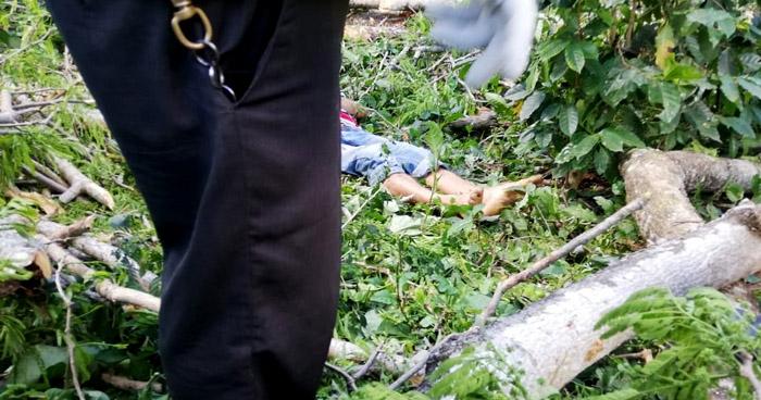 Hombre muere al caer de un árbol en Chinameca, San Miguel