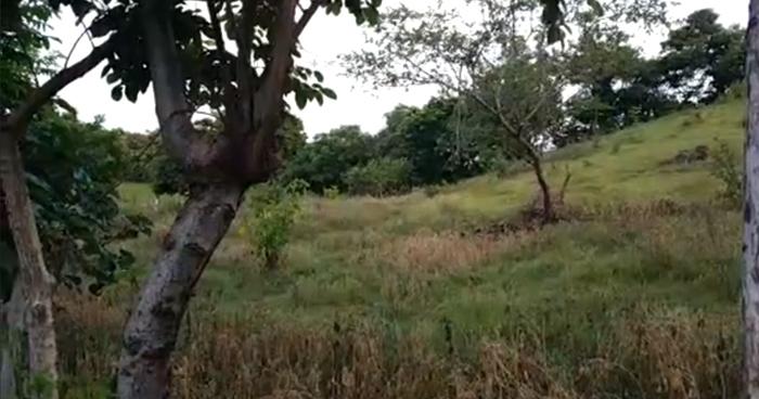 Un pandillero muerto y 6 capturados tras enfrentar a la PNC en Ozatlán, Usulutan