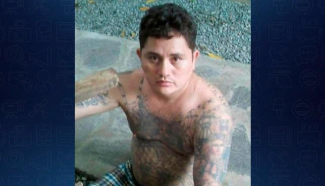 Capturan a pandillero buscado por homicidio en Coatepeque, Santa Ana