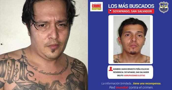 Capturan pandillero salvadoreño en República Dominicana